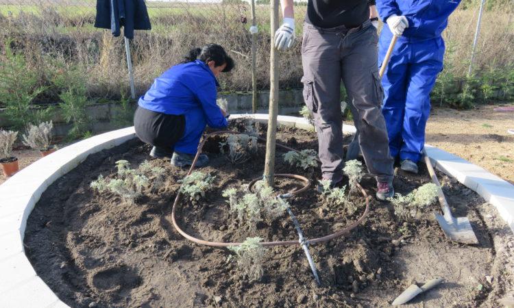 Comienza el Programa Mixto de Formación y Empleo «Parque Ambiental FEMUR VI»